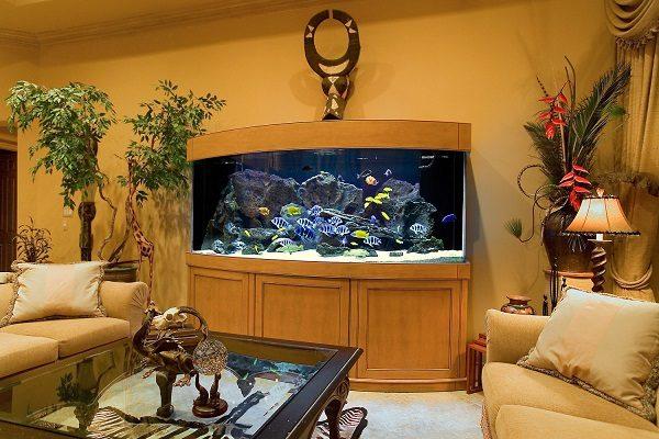 Центральный элемент гостиной - большой аквариум