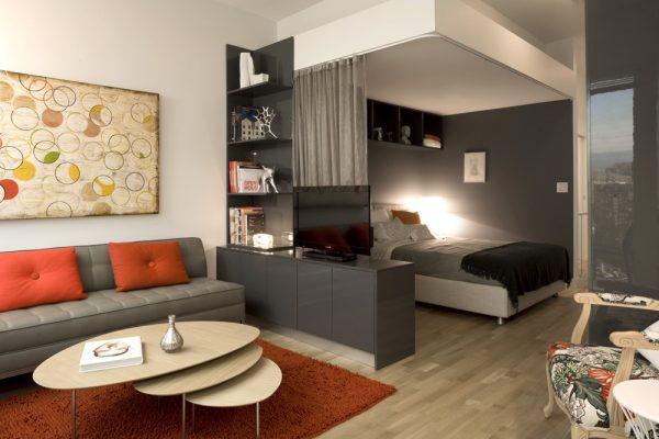 Зал и гостиная в одной комнате дизайн.